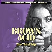 BROWN ACID: THE THIRD [12 inch Analog]