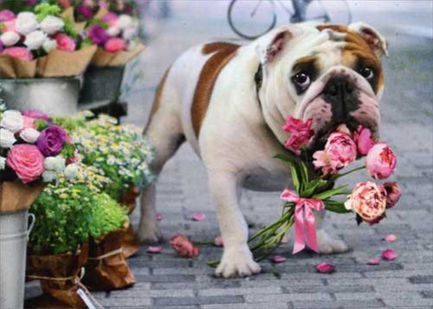 marca Dog With Bouquet In Mouth Avanti Funny Get Get Get Well Coched by Avanti Press  mejor precio