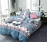 Ab Home Decor Microfiber- 350 TC Glace Cotton Double Bed AC Comforter Bedding Set with Bedsheet and 2 Pillow Covers for All Season/Weather (90 X 100 Inch) -4 Pieces