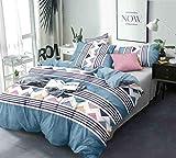 Ab home decor Super-Soft-Microfiber-AC Comforter Double Bed King Size- Duvet/Dohar/Blanket for All Weather/Seasons-90x95