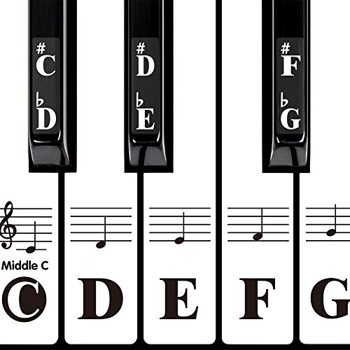 DRMFSLS Kids Piano Keyboard Stickers for 88/61/54/49/37 Key. Colorful Large Bold Letter Piano Stickers Perfect for kids Learning Piano. Multi-Color,Transparent,Removable