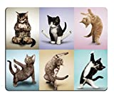 Pingpi Gaming Mouse Pad Custom Design,Yoga Cats Cute Kitty,Non-Slip Thick Rubber Large Mousepad Mat