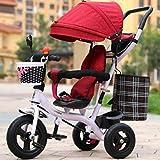 Cochecitos cómodos para bebés Triciclo para niños Trolley de Bicicleta para bebés Masculinos y Femeninos/Trolley de Bicicleta para niños de 1-2-3-6 años (Color: 1)