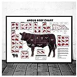 KBIASD Rinder Metzger Diagramm Rindfleisch schneidet Tier