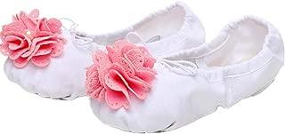 Girl's Canvas Ballet Shoes/Slippersr(Toddler/Little Kid)