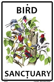 CROSSWALKS Bird Sanctuary 10