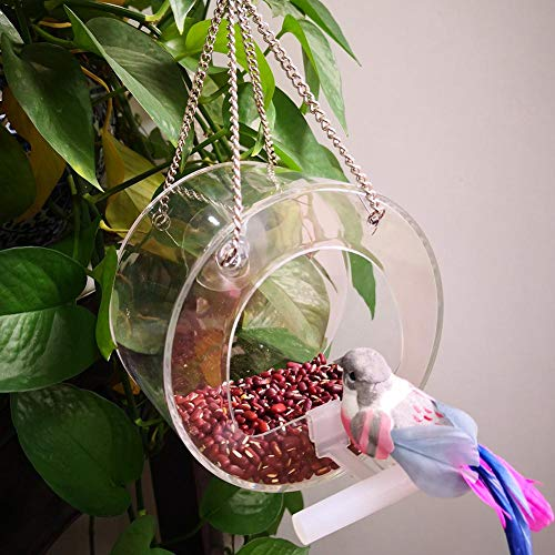 windyday Vogel Futterspender Fenster Vogelhaus Futterhaus Mit Stander Futterstation transparent zum Aufhängen Acryl Vogelfutterspender Premium Vogelfutterstation