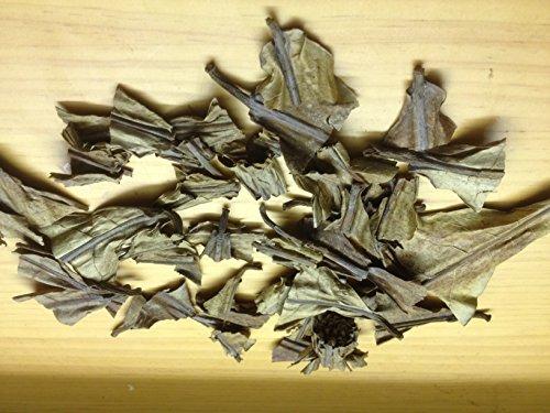100 Gramm Seemandelbaumblätter Extrakt Catappa Leaves Blatt-Enden-Konzentrat Wasseraufbereitung und Futter