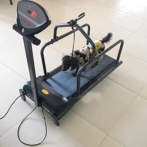 SHIYN Hundelaufband, Heimtraining Für Hunde, Heimtier-Trainingsgerät, Mit Bildschirm, Geeignet Für Training/Ausdauer Kleiner/Mittlerer Hunde