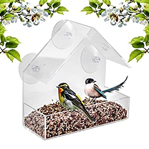 BAVISION Window Bird Feeder - Built To Last A Lifetime - Decorate Your House with Wild Birds - Clear Acrylic Plastic with 3 Strong Extra Suction Cups Included - Great Gift Idea for Nature Lovers