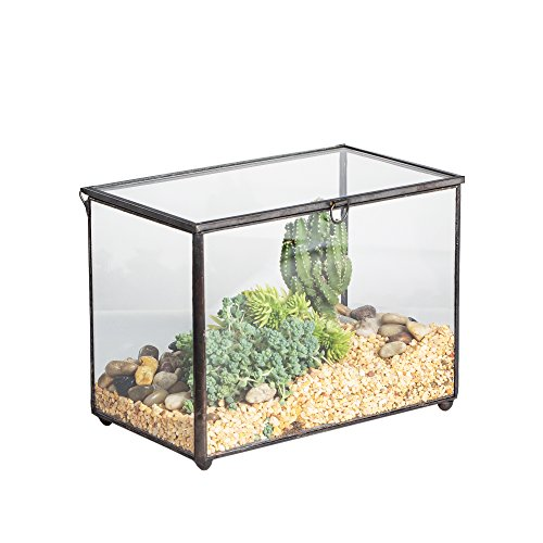 NCYP Footed Rectangle Clear Glass Geometric Terrarium Box Planter with A Lid for Reptile Succulent Moss Fern, No Plants Included