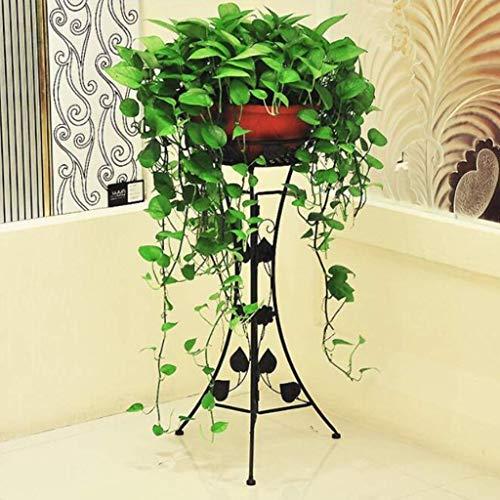 DX Support pour Plante de Fleurs Support Multifonctionnel en Fer Support de Support en Fer pour Plantes Grasses pour écran de décoration de Balcon de Jardin de Patio extérieur intérieur HUA0413