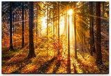 bestforhome 120x80cm Leinwandbild Wald im Herbst im