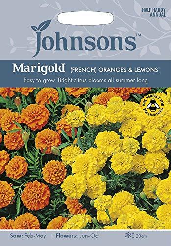 Portal Cool 3: Graines Johnson Souci Oranges françaises et les citrons semences
