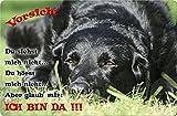 LABRADOR Retriever thumbnail