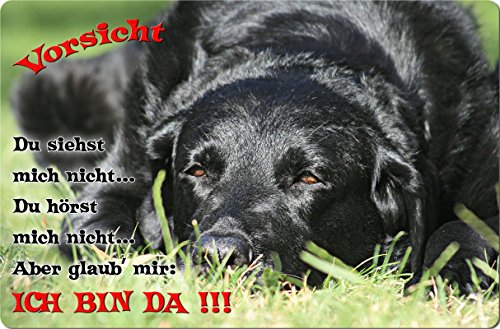 +++ LABRADOR Retriever - Metall WARNSCHILD Schild Hundeschild Sign - LAB 59 T2 S
