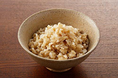 石井食品 発芽玄米ごはん 170g