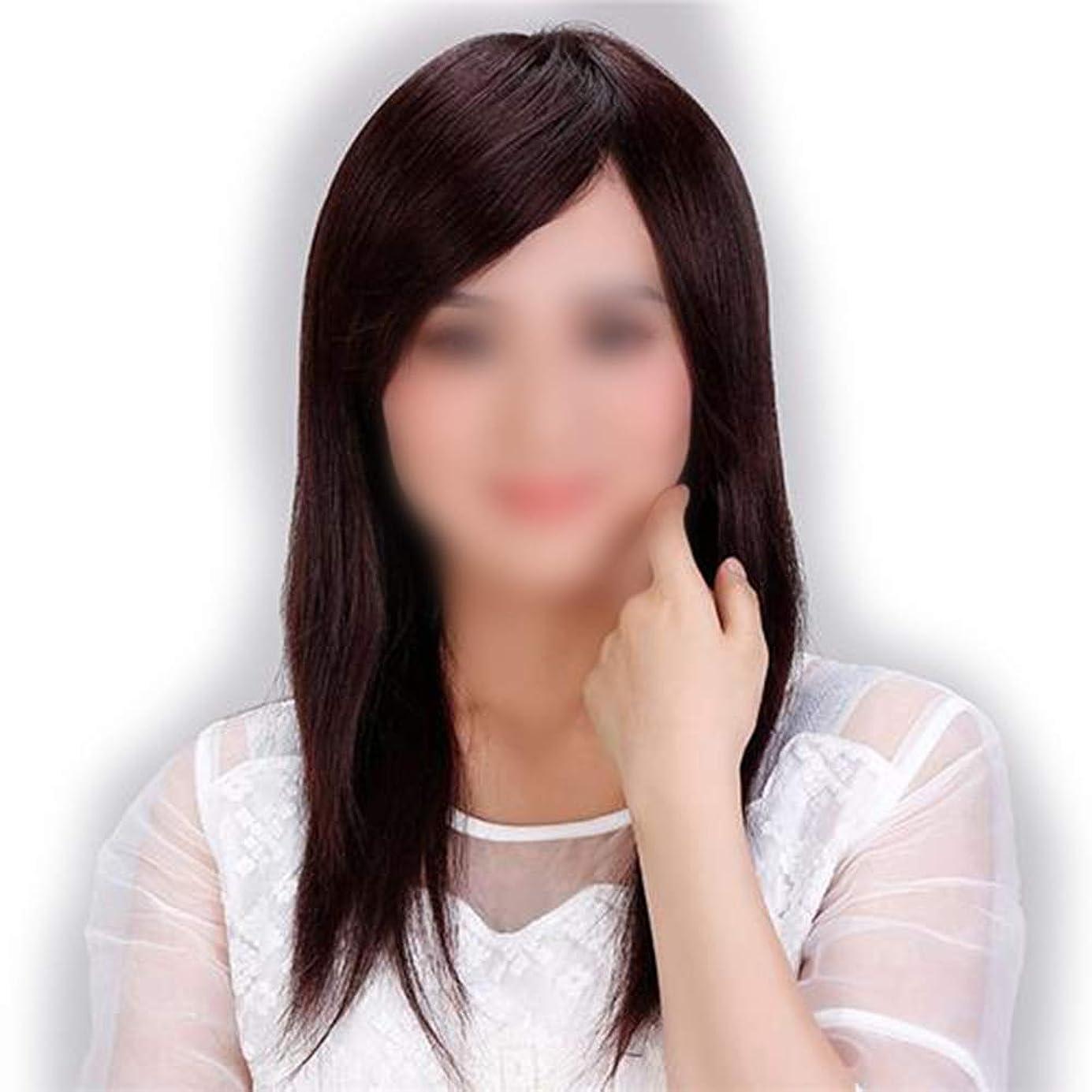 思慮のない投票飛ぶBOBIDYEE 女性の長いストレートの髪のかつらリアルヘア完全に現実的な自然な探しているかつらギフト合成髪レースかつらロールプレイングウィッグロングとショートの女性自然 (色 : Natural black)