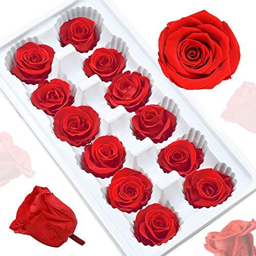 UFLF 12pcs Flores Preservadas Rosas Naturales Rosas Preservasas 4cm en Caja con Tapa Transparente para Regalos San Valentín Decoración Hogar Cafetería DIY Manualidad Artesanía Bricolaje