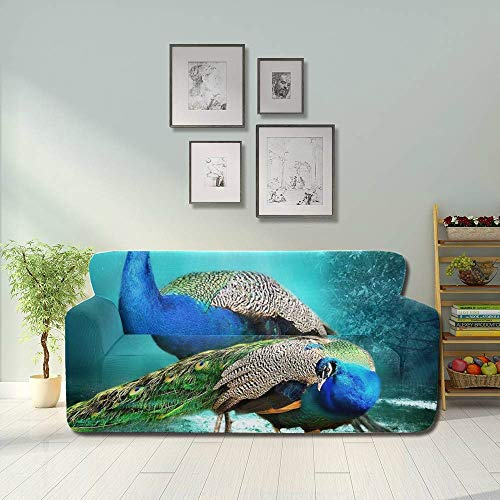 JOCHUAN Beautiful Peacock Pair Hd Wallpaper Bea Stretch Slipcover Sofa Sofa Furniture Cover Fitted Furniture Protector 2&3 Seat Sofas
