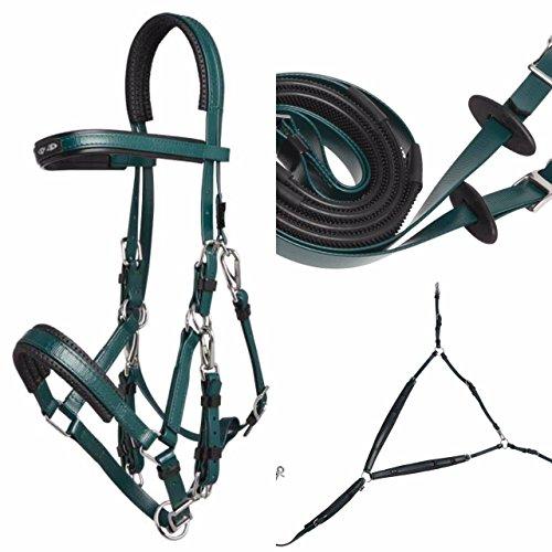 ZILCO Deluxe Endurance Set - Zaumzeug, Zügel und Vorderzeug Größe Arabisch, dunkelgrün