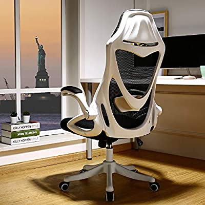 BERLMAN Ergonomic High Back mesh Office Chair with Adjustable Armrest Lumbar Support Headrest Swivel Task Desk Chair Computer Chair Guest Chairs Reception Chairs (White) from B