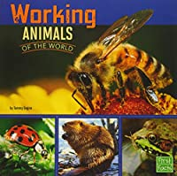 Working Animals of the World (All About Animals)
