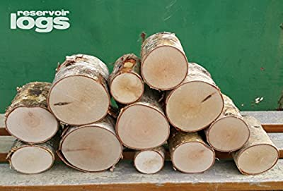 The Little Box of Decorative Birch Logs 12cm Kiln Dried Full Round Display Logs Fine Sawn Ends by reservoir logs