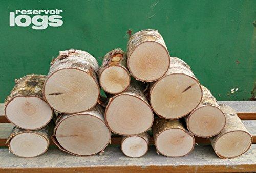 The Little Box of Decorative Birch Logs 12cm Kiln Dried Full Round Display...