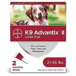 best top rated flea and tick prevention 2021 in usa