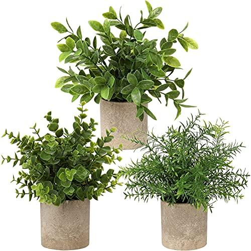 Delgeo Plantes Artificielles en Pot 3 pcs, Petites Plantes Intérieur Artificielles, Convient pour la Décoration de Mariage de Table à Manger de Balcon de Bureau à Domicile