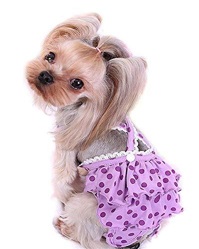Vivi Bear Doggie Windeln für Frauen, wiederverwendbar, waschbar, hygienische Höschen mit verstellbarem Gurt, einfache Physiologische Shorts für kleine und mittelgroße Hunde