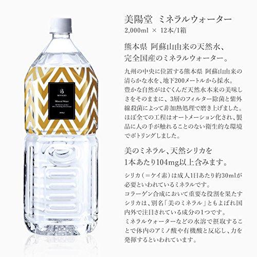 『美陽堂 ミネラルウォーター シリカ水 天然水 熊本県 阿蘇産 2L×12本』の2枚目の画像
