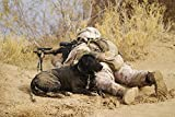 Stocktrek Images – U.S. Marine and a military working dog