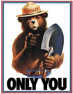 Desperate Enterprises Smokey Bear Only You Tin Sign, 11.5