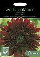 WB 英国ジョンソンズシード Johnsons Seeds world botanics collection Sunflower Moulin Rouge F1 サンフラワー・ムーラン・ルージュ・F1