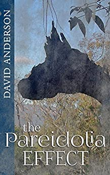[David Anderson]のThe Pareidolia Effect (English Edition)