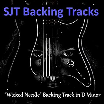 Wicked Needle Guitar Backing Track in D Minor