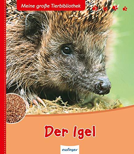 Der Igel (Meine große Tierbibliothek)