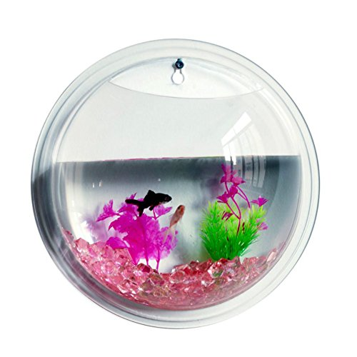 Patgoal Acrylic Fish Tank Wall Mounted Acrylic Plant Fish Bowl Home Decoration (S)