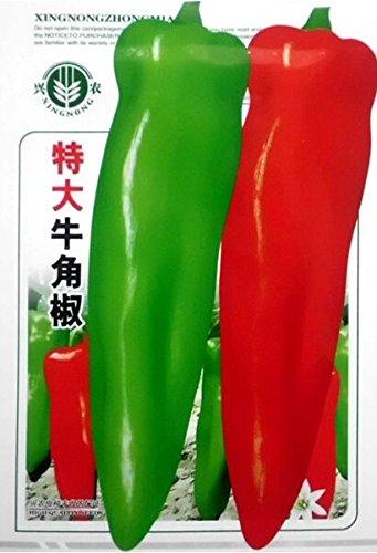 Graines Heirloom long géant corne de boeuf poivrons bio, pack d'origine, 100 graines / Pack, Vert Rouge Légumes e3106