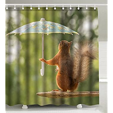 Wknoon 72 x 72 inch Shower Curtain with Hooks, Funny Squirrel with Umbrella Humor Nature Animal