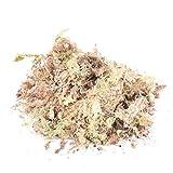 Sphagnum Moss Secco Giardino Idratante nutrizione organico Acqua Erba Substrati, resistente alla corrosione sfagno 12L