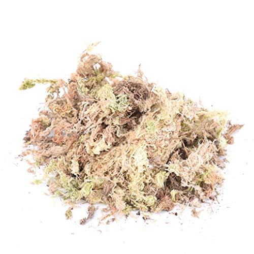 Kacniohen Sphagnum Dry Moss Garden Moisturizing Nutrition Organic Water Grass Substrate, korrosionsbeständig Sphagnum Moss 12L