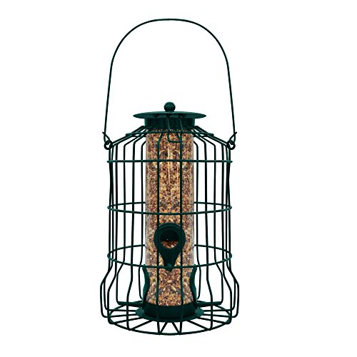 Gray Bunny Caged Tube Feeder, Squirrel Proof Wild Bird Feeder, Outdoor Birdfeeder with Large Metal Seed Guard Deterrent for Large Birds