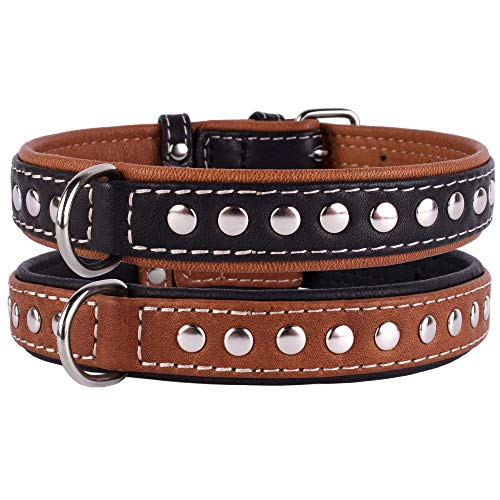 CollarDirect Studded Dog Collar Leather Pet Collars for Dogs Small Medium Large Puppy Soft Padded Brown Black (Black, Neck fit 13' - 14')