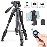 Camera Tripod Lightweight Travel Tripod, INNOREL RT10 55.9inch Aluminum Tripod with 2 Quick