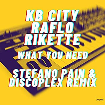 What you need (Stefano Pain & Discoplex Remix)