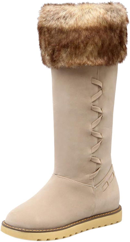 AicciAizzi Women Platform Snow Boots Pull On
