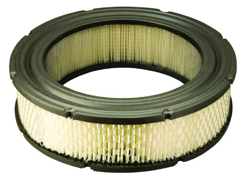 Briggs & Stratton 692519 Round Air Filter Cartridge,White